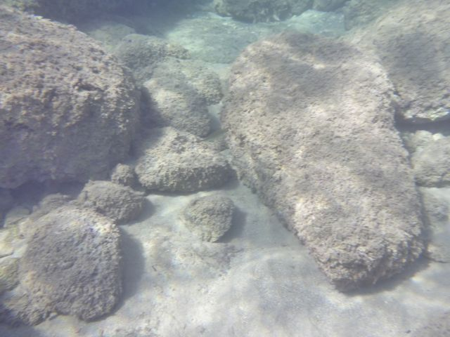 terrain-submergedboulders